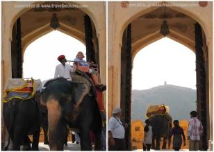 AmberFort_Jaipur2
