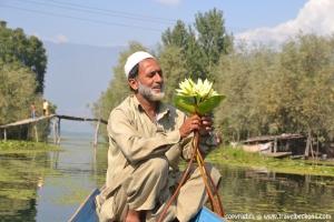 Boatman_lotus