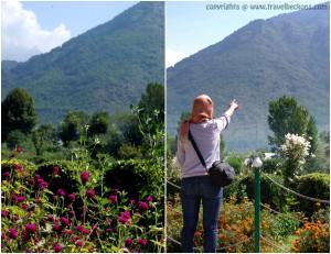 Garden_mountains
