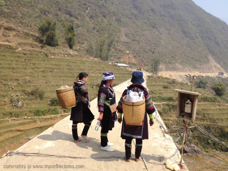 Sapa travel guides