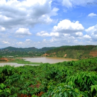 Explore Dalat - The Perfect Hideaway