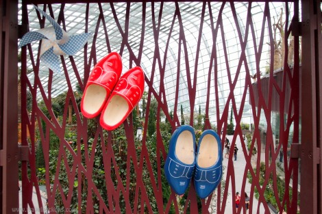 shoes_tb1