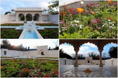 Indian Char Bagh Garden   The 'Char Bagh' or 'enclosed four part' garden was the original Paradise Garden. It is sometimes known as the 'Universal Garden', not only for its widespread and long period of use, but also because it was regarded as an icon for the universe itself.