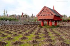 Te Parapara   Listed under the Productive Collection, this garden includes records of traditional knowledge, interpretive material and ceremonies all focused on the heritage and tikanga associated with the local area.