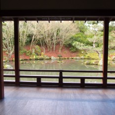 Japanese Garden of Contemplation | This is a garden that embraces contradiction in all its forms, i.e. movement/stillness, complexity/simplicity, vastness/ smallness, and even wet/dry...""
