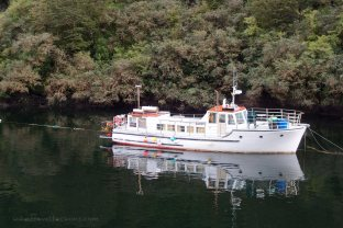Wonderful reflection on the tranquil waters of Doubtful Sound