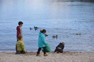 Kids playing with ducks at Town pier