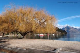 Along Lake Wakatipu