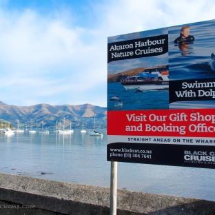 Hello, Akaroa Harbour!