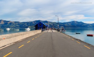 RoadTrip_Akaroa