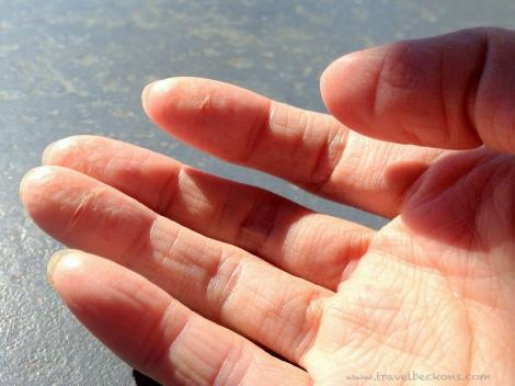 hand_tb