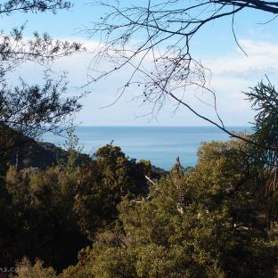 Glimpse of the beautiful sea along the way.