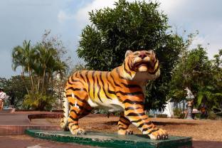 while a tiger stood isolated on the left