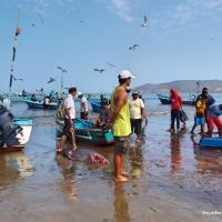 Puerto Lopez, Ecuador: Conversation with a Fisherman