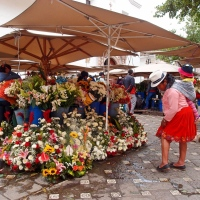 Explore Cuenca, Ecuador: Charms, Potions and Straw Hats