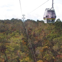 Beyond Acrophobia: The Thrills Trails of Cable Cars